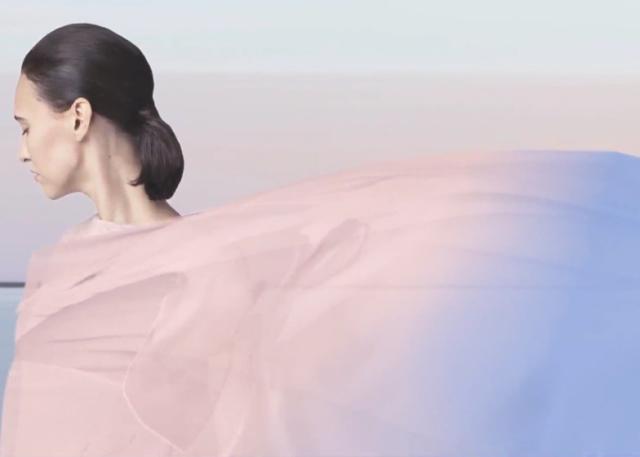 Pantone-colour-of-the-year_Rose-Quartz-Serenity_dezeen_ban (1)